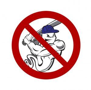 No Baseball